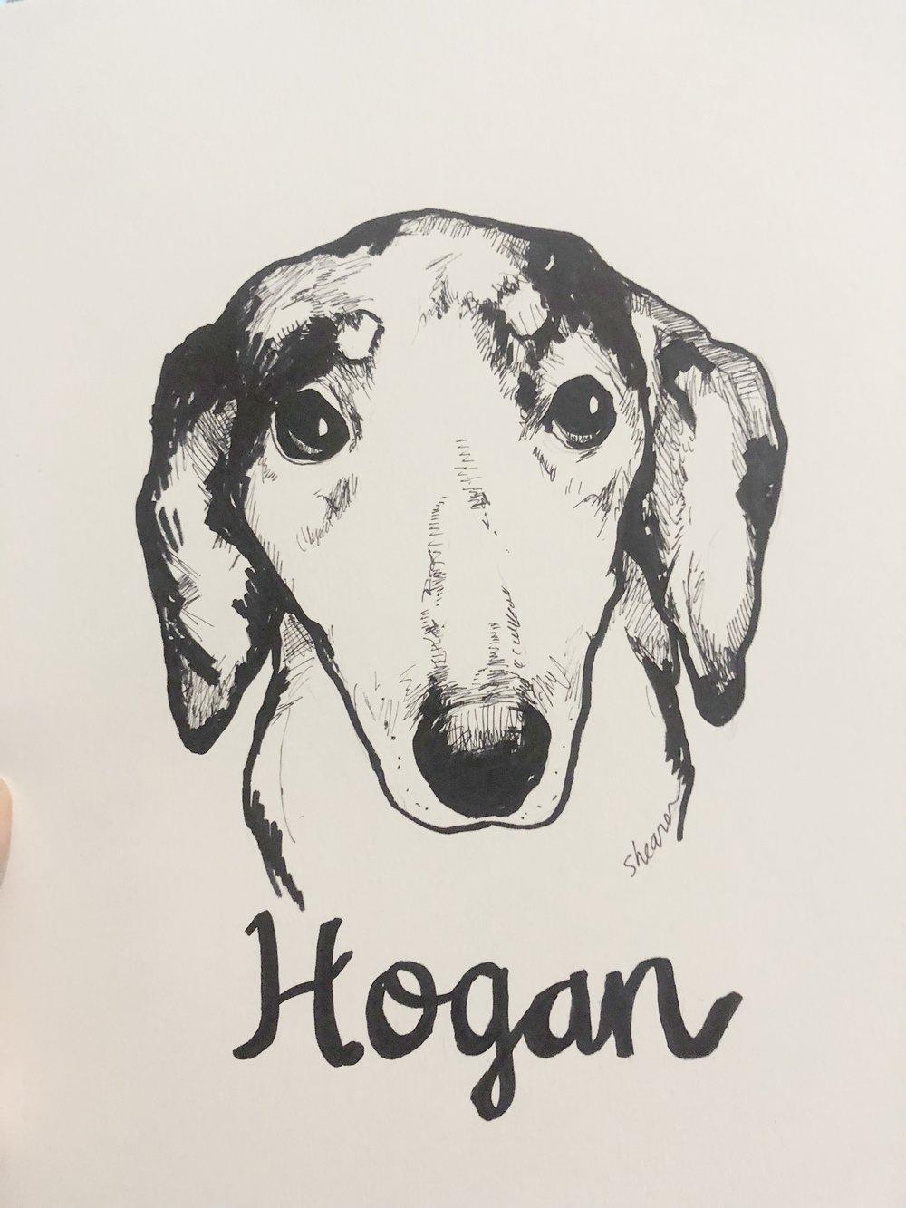 Hogan.jpeg
