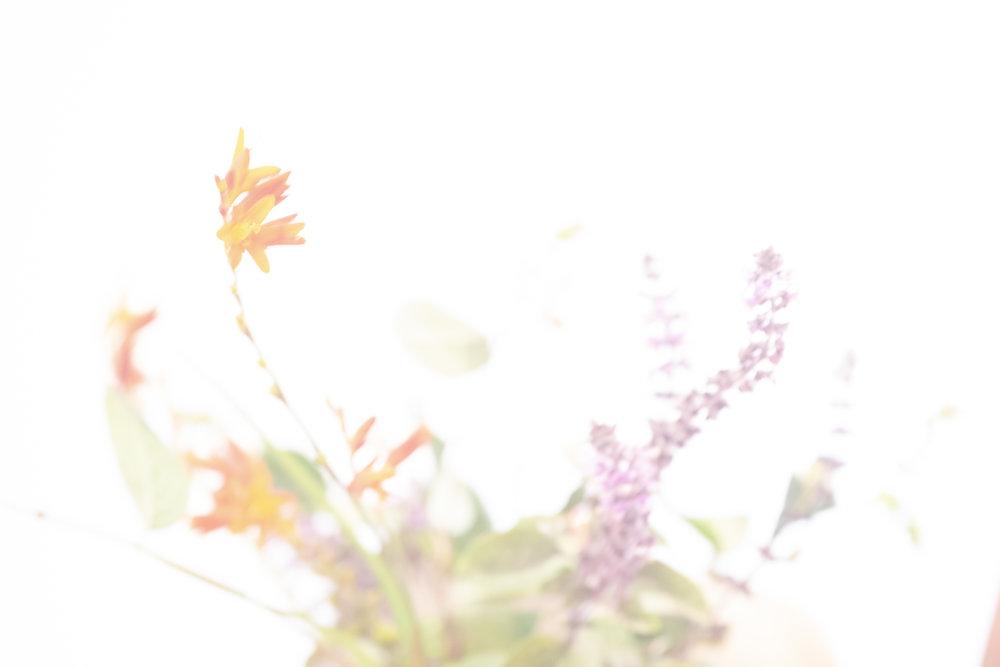 flower_test2.jpg