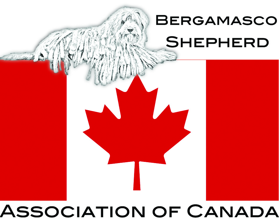 Bergamasco Shepherd Association of Canada