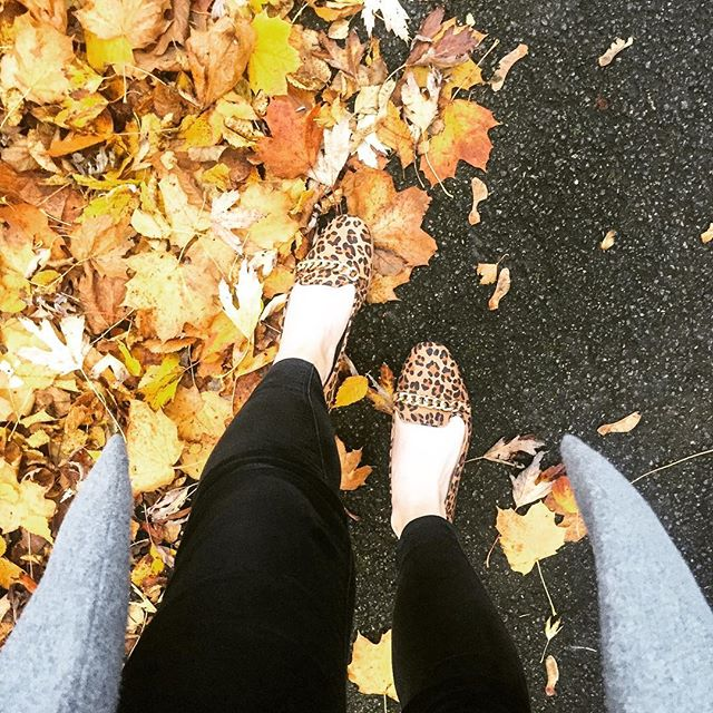 I absolutely did not take a detour on the way home to get a pic of these shows with leaves and I definitely did not stand for 15 minutes arranging leaves in a park. Nope. 🍂 (shoes £9 @primark) . . . . . #outfit #fashionblogger #liketkit #discoverunder100k #fbloggers #fashiondiaries #styleblogger #discoverunder5k #scotblogger #ukbloggers #autumn #discoverunder10k #primark #bloggerlife #bloggershare #glasgow #likeforlike #lfl #followback #instagood #ootd #likeback #followforfollow #f4f #girl #like4like #blogpromotion #flashesofdelight #prettylittleiiinspo #fblogger