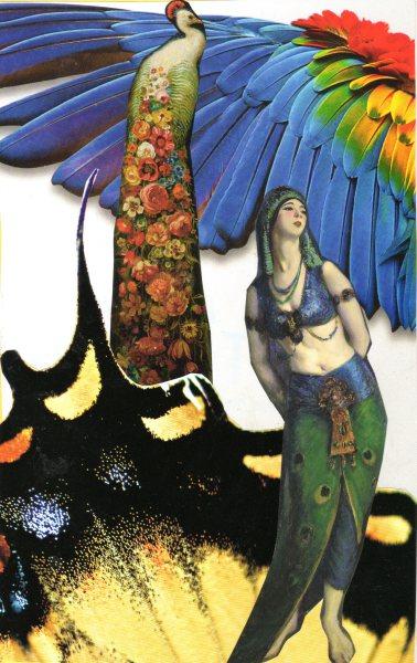 Peacock-woman180.jpg