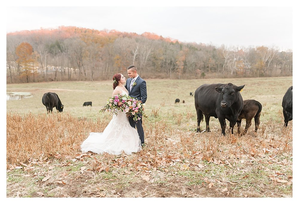 Indianapolis Wedding Photographers_0543.jpg