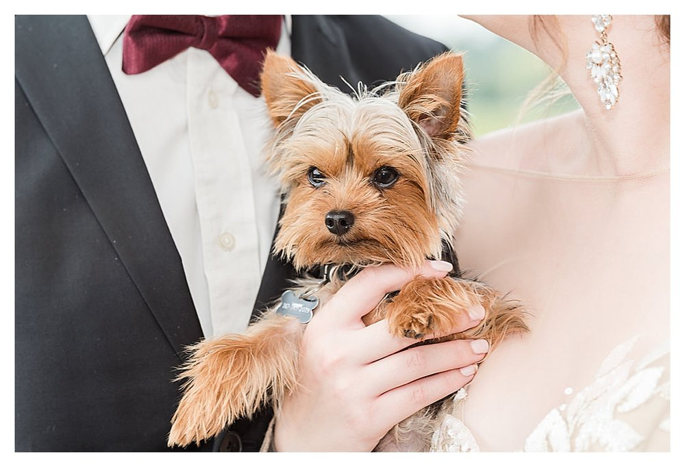 Daniel's Vineyard Wedding Photos_0191.jpg