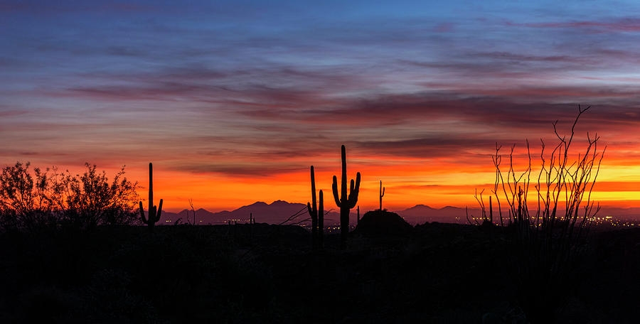 desert-skyline-saija-lehtonen.jpg