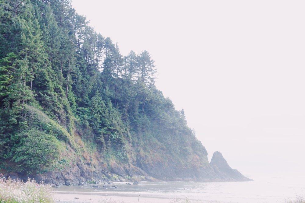 I just loved the foggy beautiful coastlines.