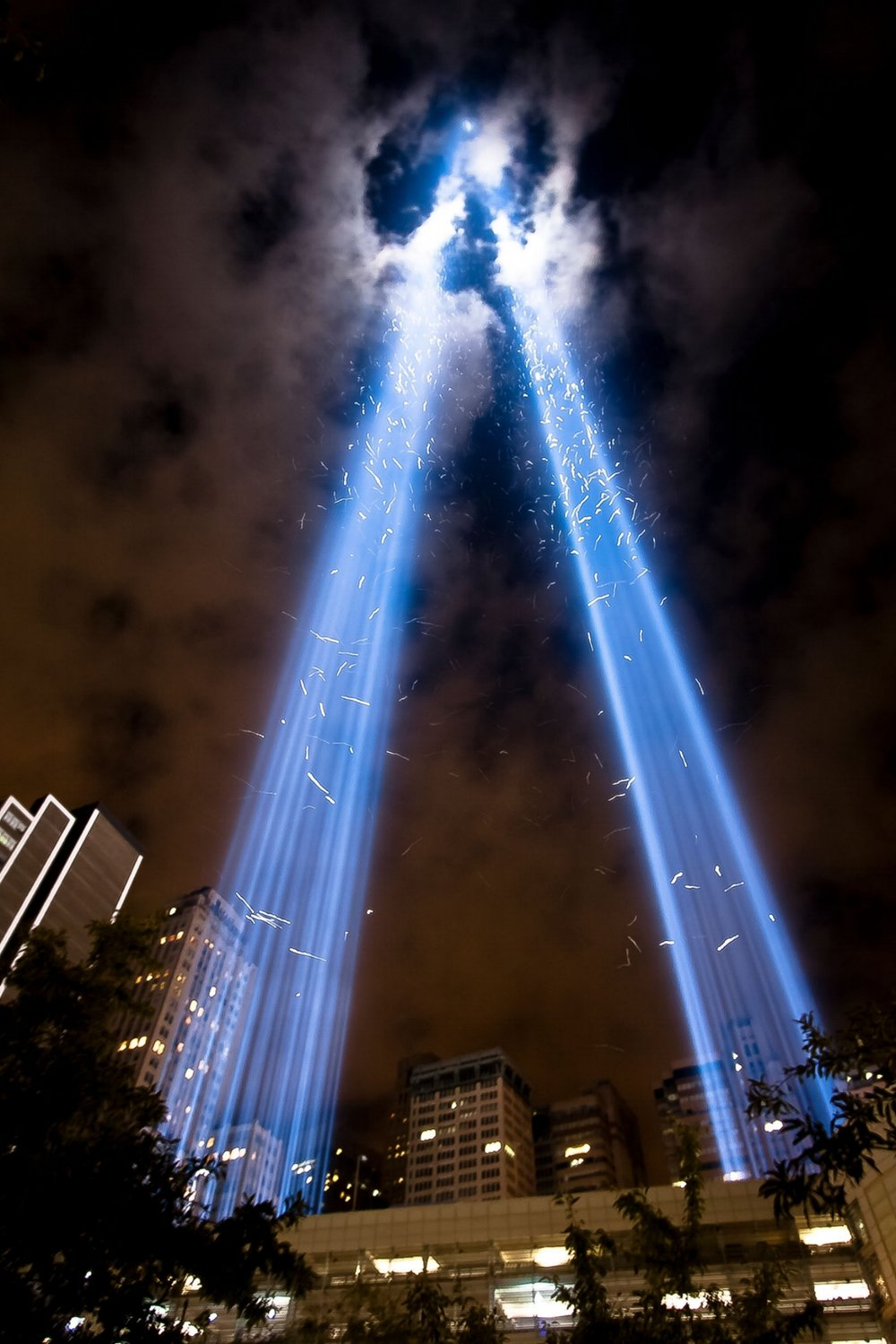 The Tribute in Light for victims of 9/11 attracts birds which remain in the columns of light, circling. Lights are turned off periodically so that birds can escape. - pc: John De Guzman/New York Times