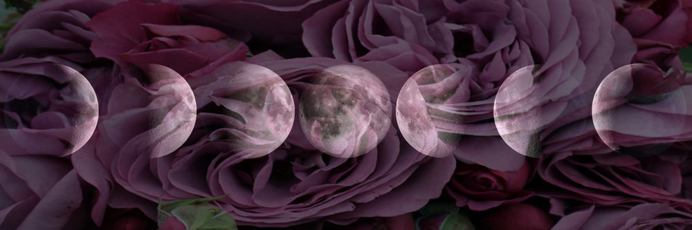 Dakini Rose Gardens -