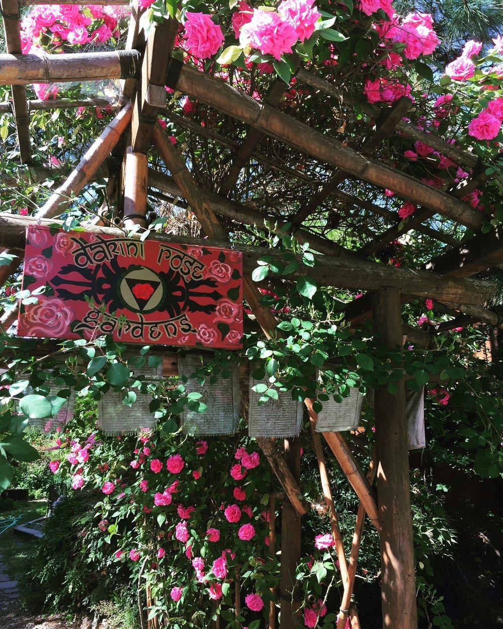 Rose Entryway