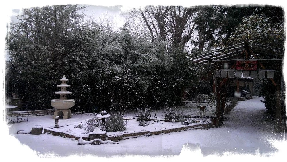 DRG winter 2013.jpg