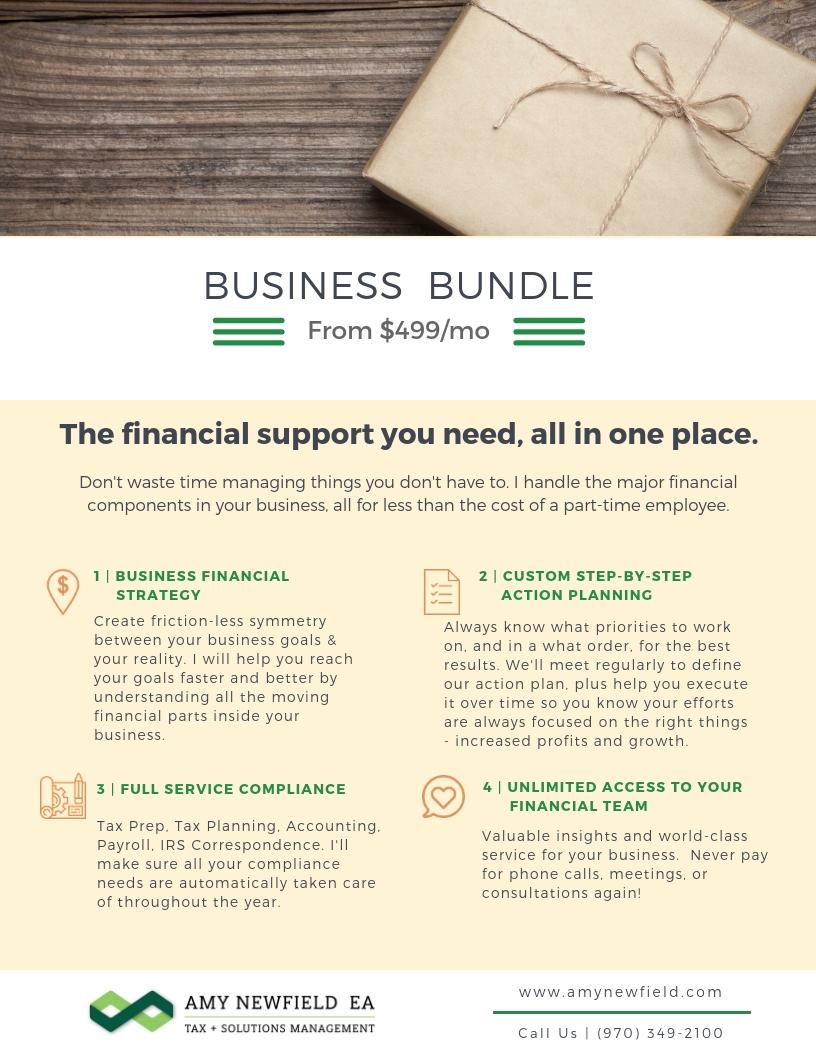 Copy of Business Bundle.jpg