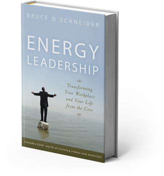 Energy Leadership Book