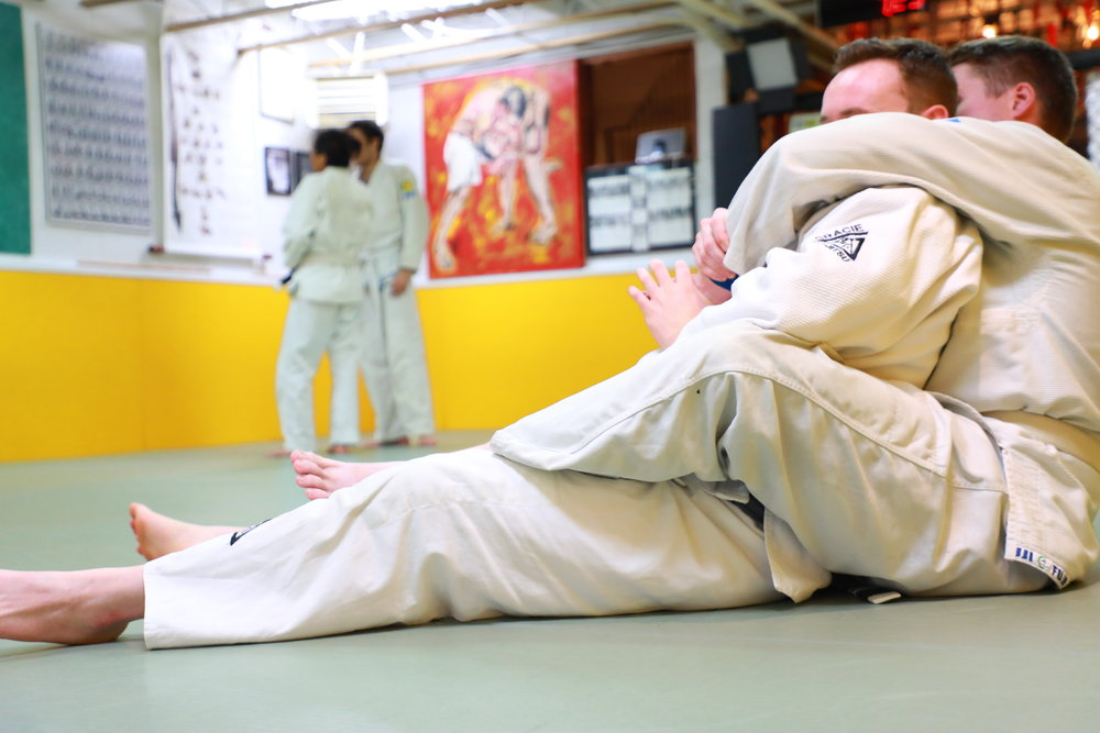 Jiu Jitsu, the Gentle Art - Beginner friendly. practical.