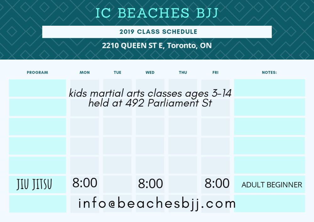 Beaches BJJ class schedule