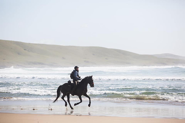 The author gallops Kwacha along the coastline. Photo courtesy Katy Willings.