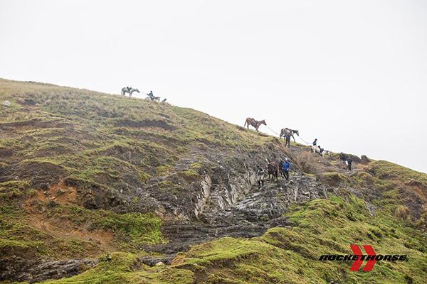 Despite the difficult terrain, our horses always did their best to keep their human teammates safe. Photo courtesy Daniela Zondagh.