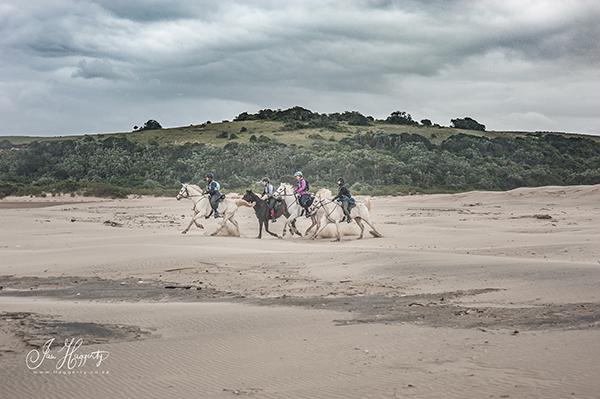 The finish line. Photo courtesy Ian Haggerty.