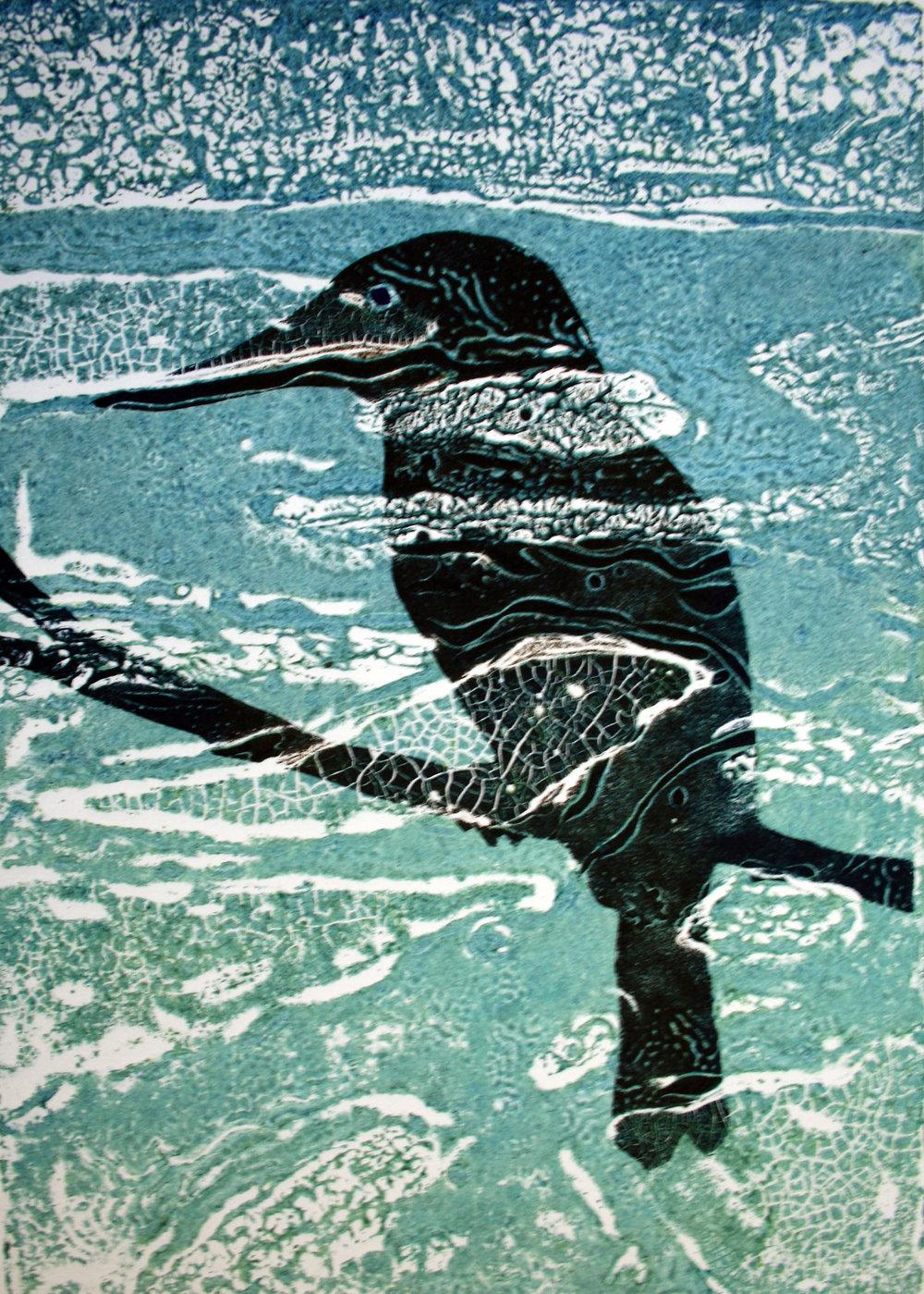 'Kingfisher'