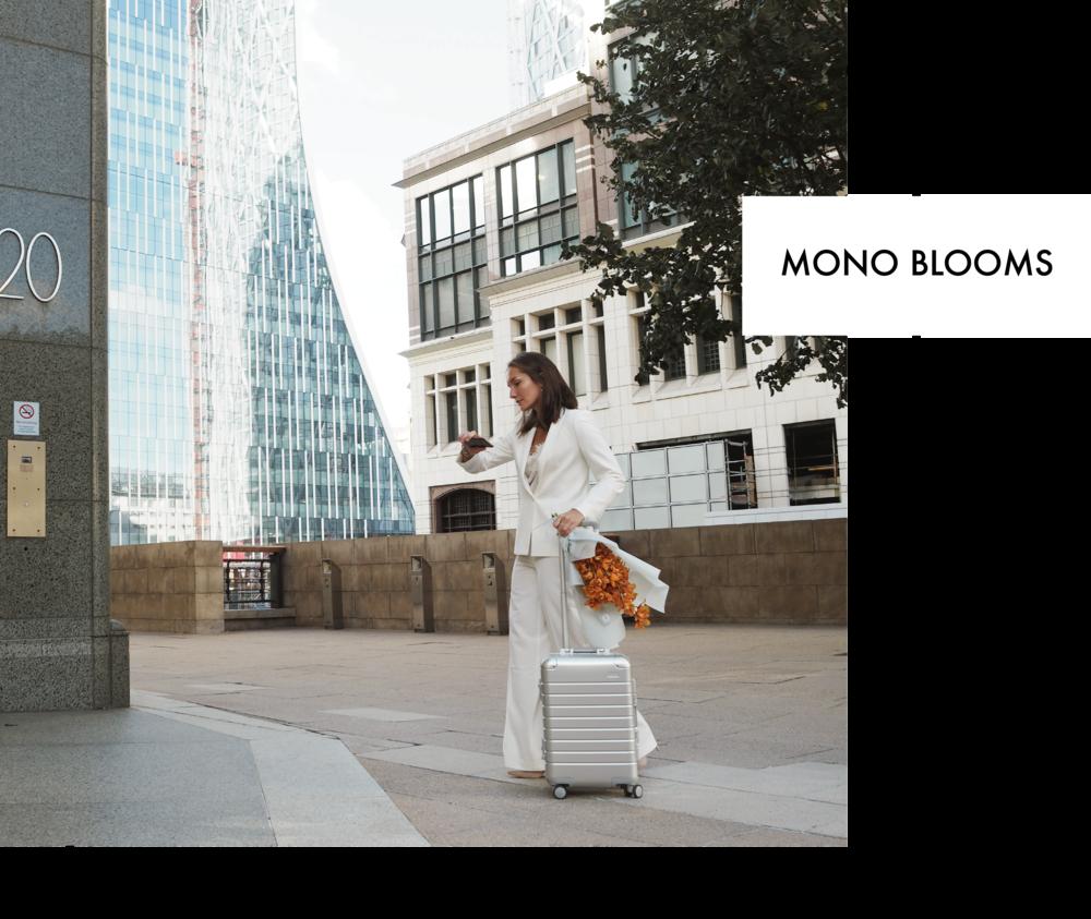 mono2 (1).png