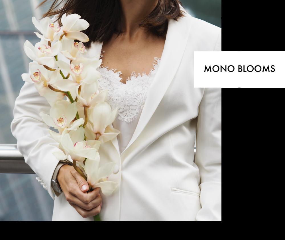 mono1 (1).png
