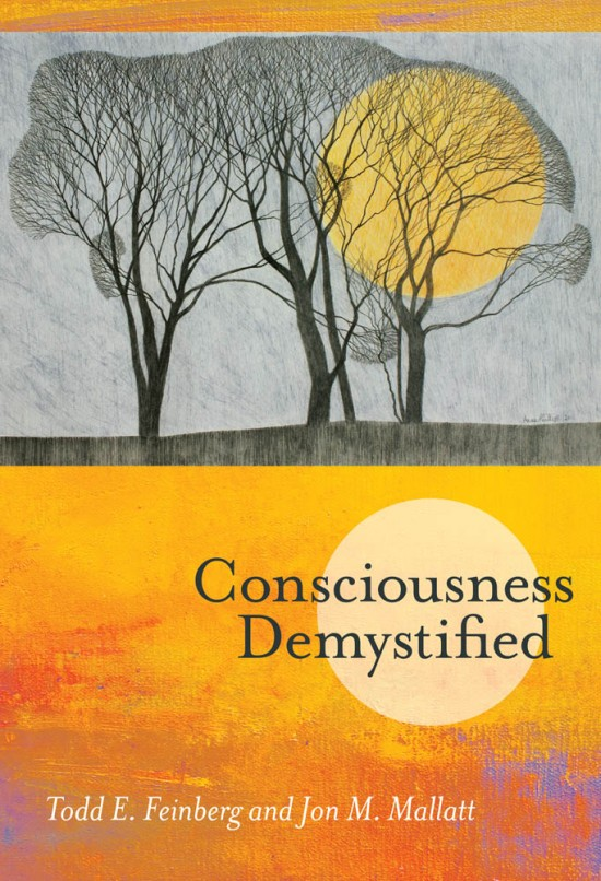 conscousness-demystified.jpg