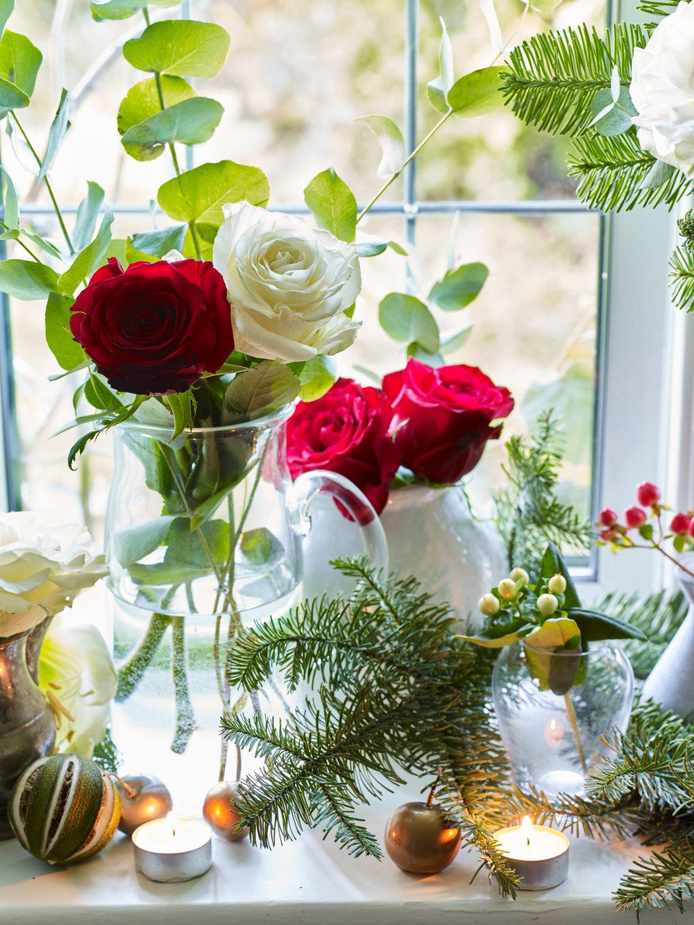 JI_231018_FlowerBe_010.jpg