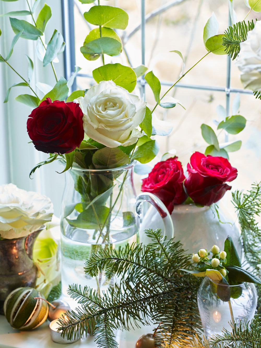 JI_231018_FlowerBe_011.jpg