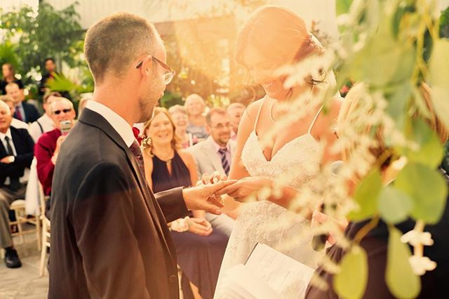 The magic of lens flare @aquatopia_conservatory #weddingvows#rings#photobugcommunity #weddingphotojournalism#photooftheday #huffpostido#greenweddingshoes #ottawawedding #junebugweddings