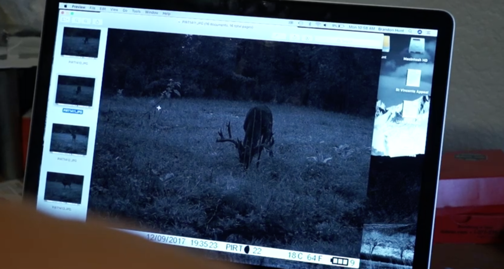 big-arkansas-stag-caught-on-camera-in-daylight-on-struttinbuck-streaming-on-waypoint-shot-1