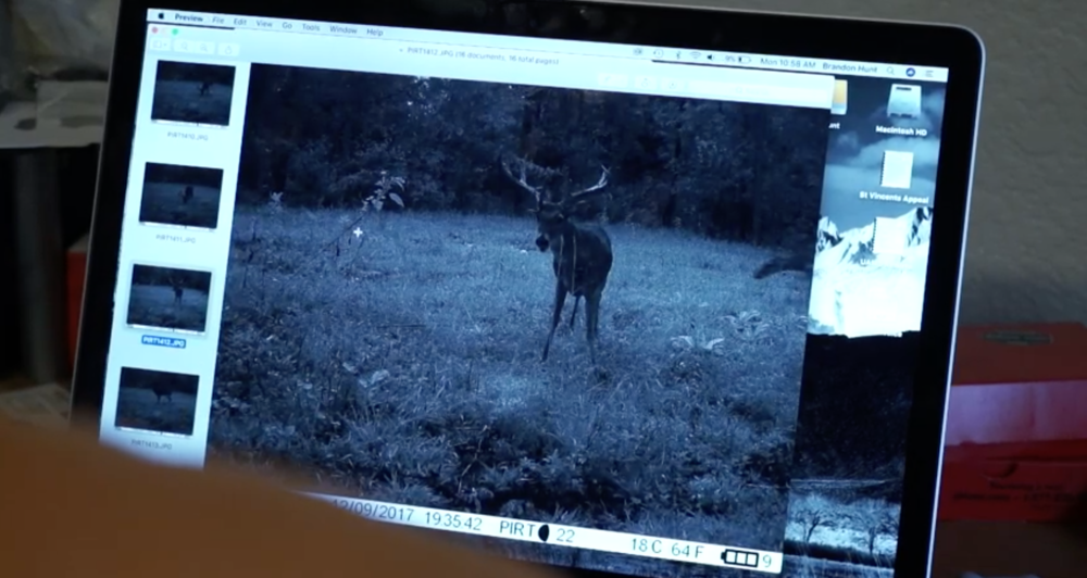 big-arkansas-stag-caught-on-camera-in-daylight-on-struttinbuck-streaming-on-waypoint-shot-2