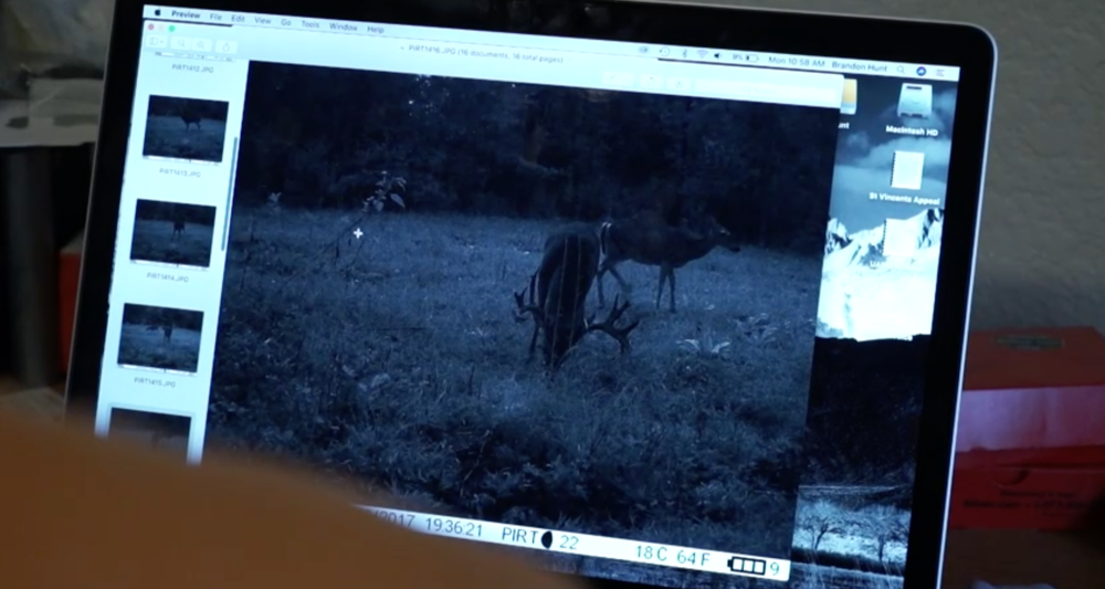 big-arkansas-stag-caught-on-camera-in-daylight-on-struttinbuck-streaming-on-waypoint-shot-4