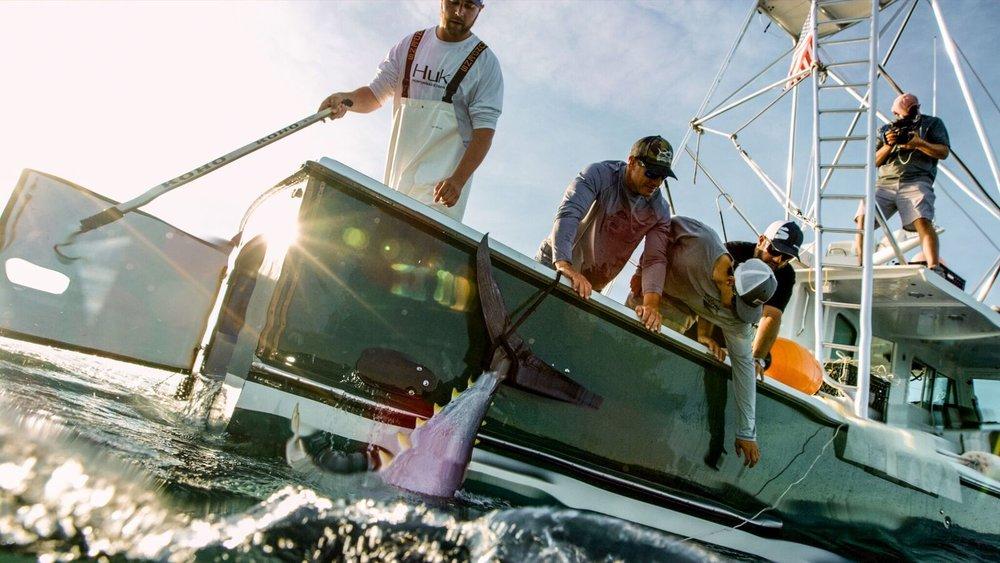 Local-Knowledge-fishing-show-watch-episodes-tuna-harpoon-cape-cod-waypoint-tv.jpg
