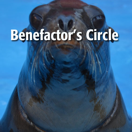 benefactors-circle.jpeg