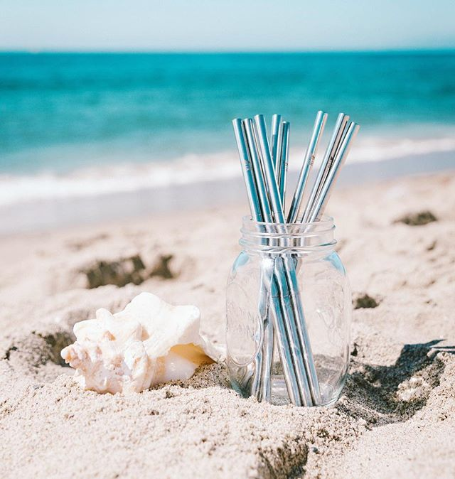 Happy Earth Day! 🌏🌍🌎 we are so excited to announce that thanks to your support we have sold out of our first order of Fin straws! We should be getting more in ASAP so to thank you and celebrate Earth Day we're offering 30% off by using code EARTHDAY at checkout. Don't forget 1% of all orders go to Ocean Conservancy! Orders will be shipped within the next two weeks. Thank you! 🌸🐋🌳🌼🌊