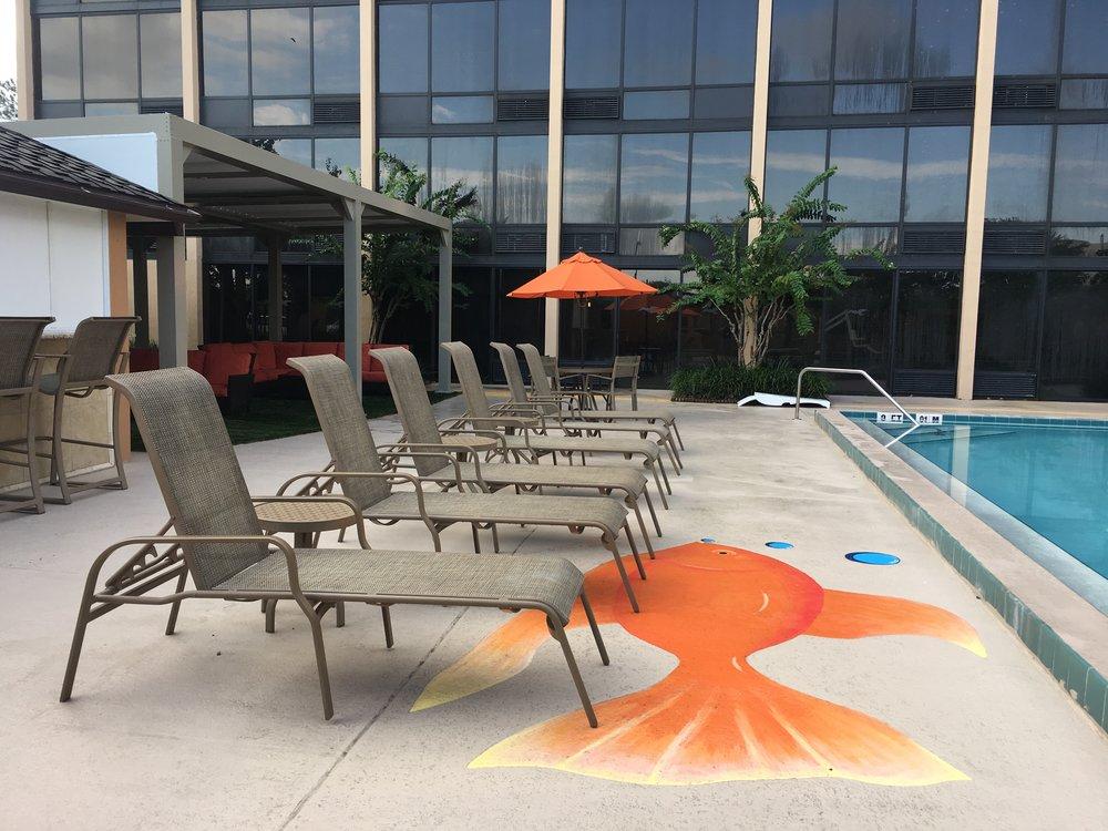 Best Western Orlando Gateway Hotel Pool Deck
