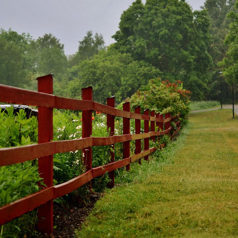 fence-2587476_12802.jpg