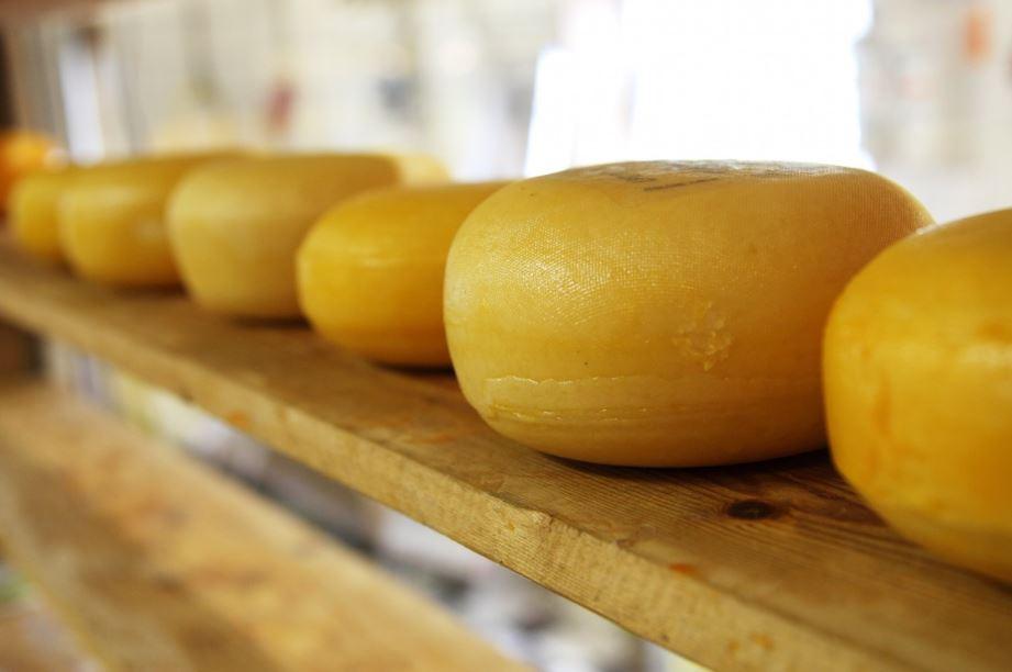 Ausfine cheese cheddar mozz mozzarella parmesan