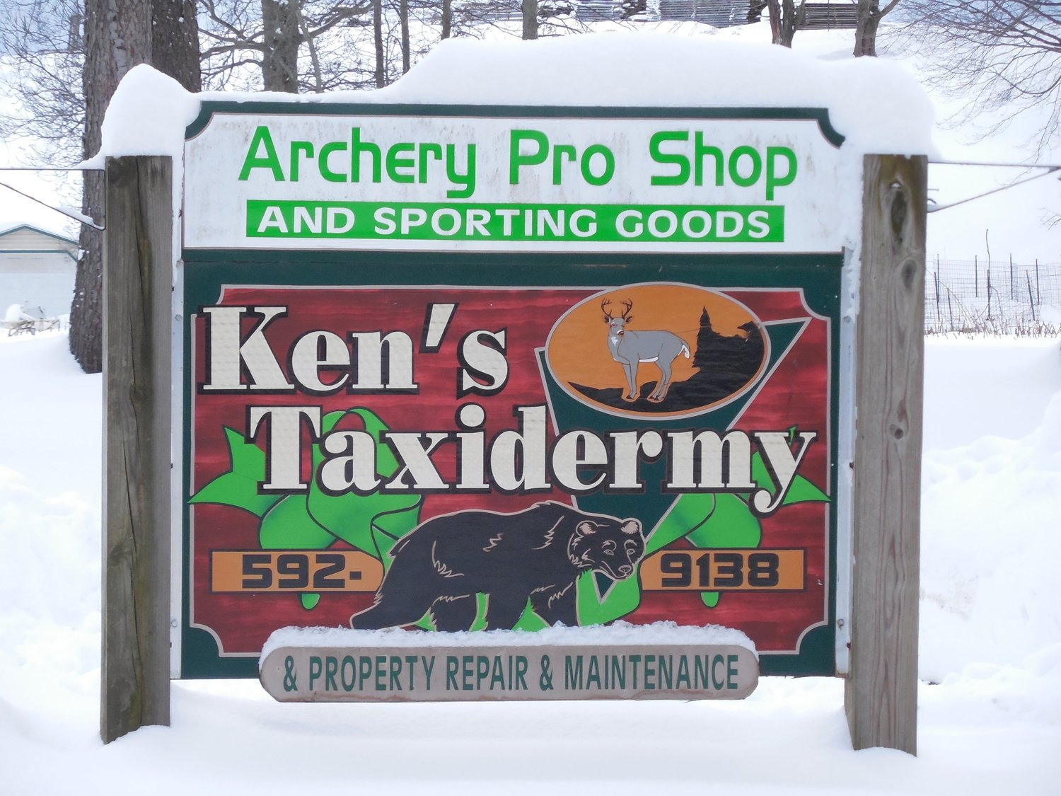 Ken's Taxidermy and Competition Shooting