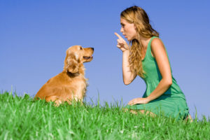 bigstock-young-woman-with-dog-16235621-300x200.jpg