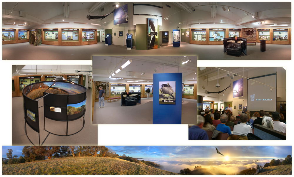 Condor Exhibit Photos02-1500Wide.png