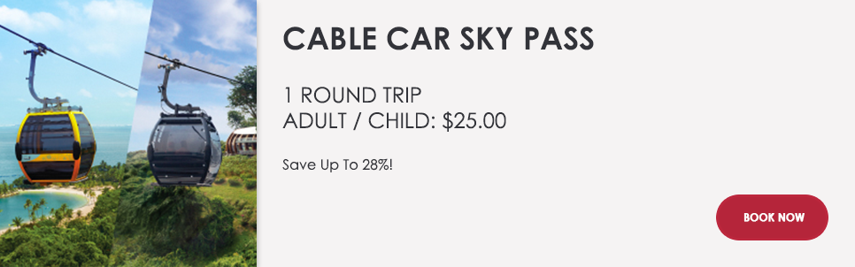 GET-TICKETSCable-Car-Sky-Park--1.png