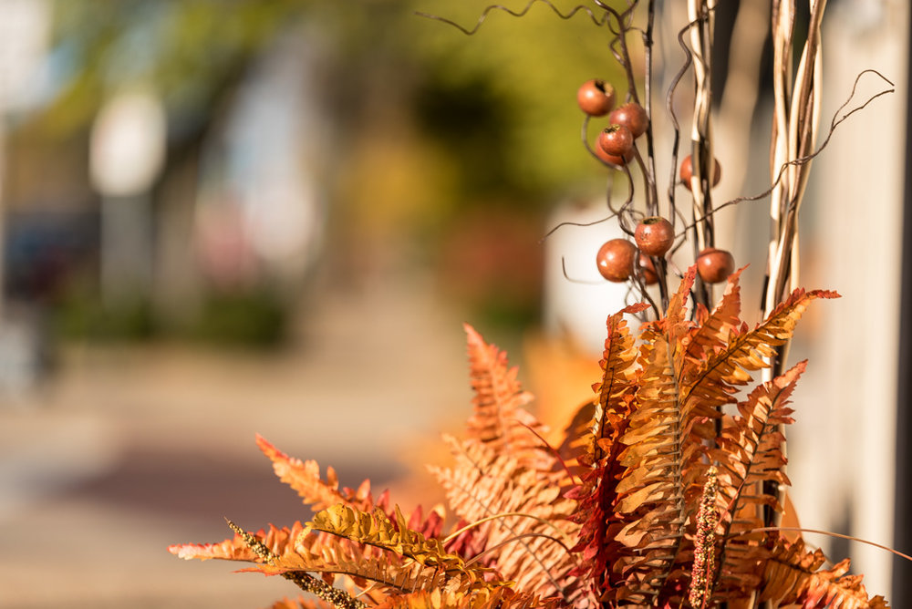 PeoriaHeights_Fall_2017_84_Web.jpg