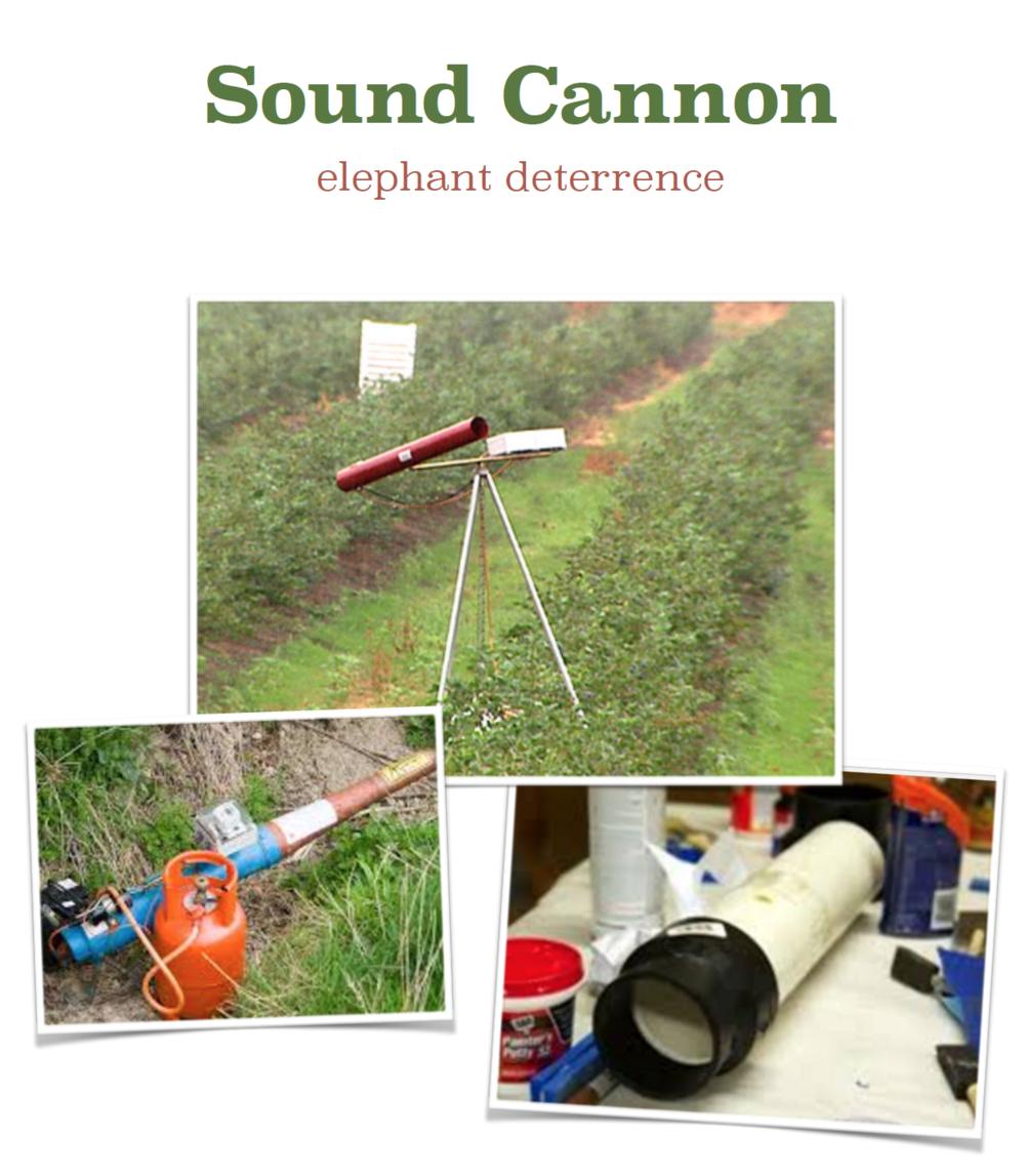 sound cannon shot.jpg