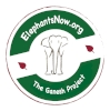 ElephantsNow_Asian logo_latest2.jpg