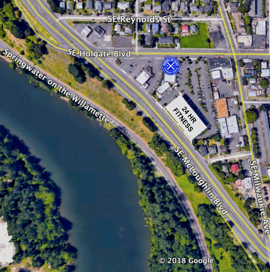 LOCATION - Conveniently located at 1280 SE Holgate Blvd. between SE McLoughlin Blvd. (99E) and SE Milwaukie Ave.We are located next door to New Era Pharmacy and 24 Hour Fitness with an ample parking lot with dedicated spaces.Easy access from Powell Blvd./Ross Island Bridge, Brooklyn, Sellwood-Moreland, Eastmoreland, Reed, Richmond, Woodstock, Creston-Kenilworth, Hosford-Abernethy, John's Landing, and South Waterfront neighborhoods.TRIMET: MAX Orange Line Station (SE 17th & SE Holgate Blvd.). Bus lines: 17 (Holgate-Broadway), 19 (Woodstock-Glisan), and 70 (12th/NE 33rd Ave.)HOURS:MONDAY, TUESDAY, THURSDAY & FRIDAY 8 AM - 6 PMSATURDAY 9 AM - 2 PMCLOSED WEDNESDAY & SUNDAYPHONE: 503-505-9112