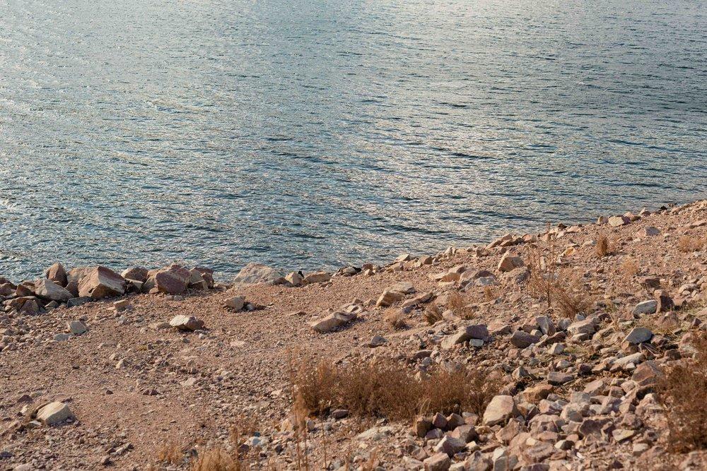 Lakeside at Lake Bellfield - 07.jpg