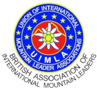 baiml logo.jpg