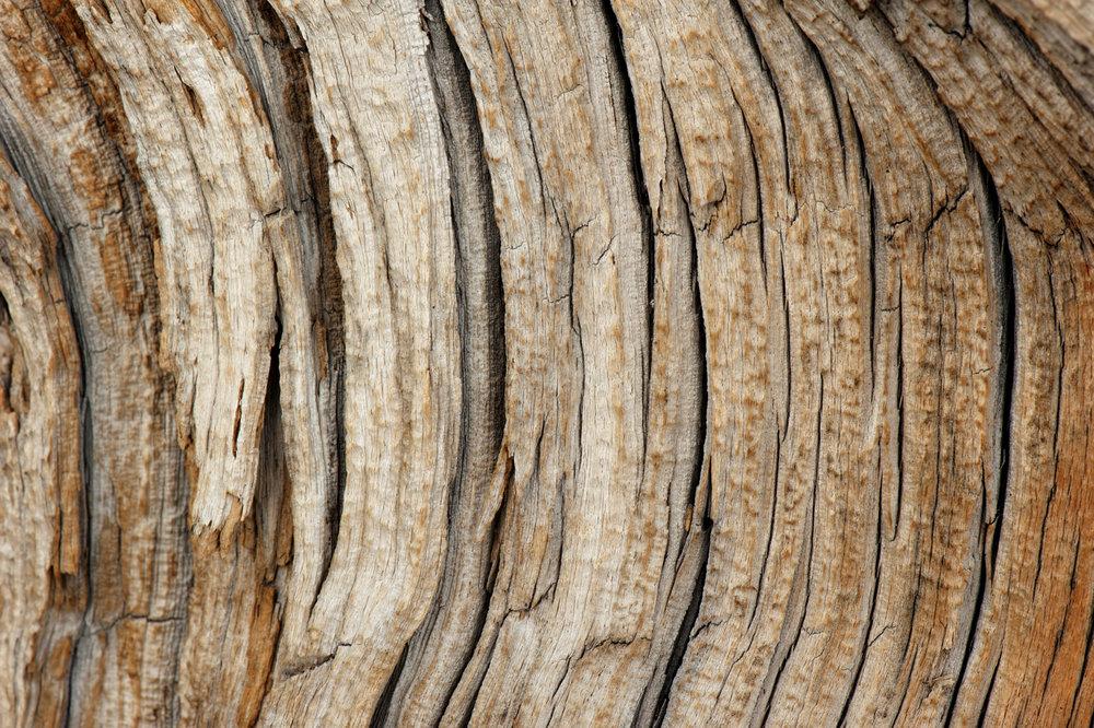 wood-100.jpg
