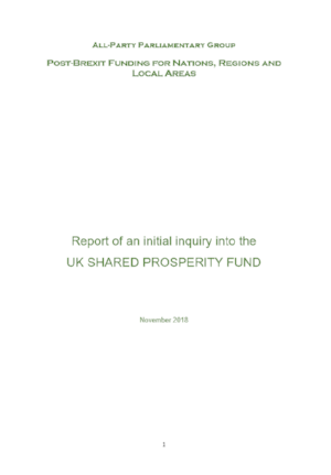 APPG report cover.png