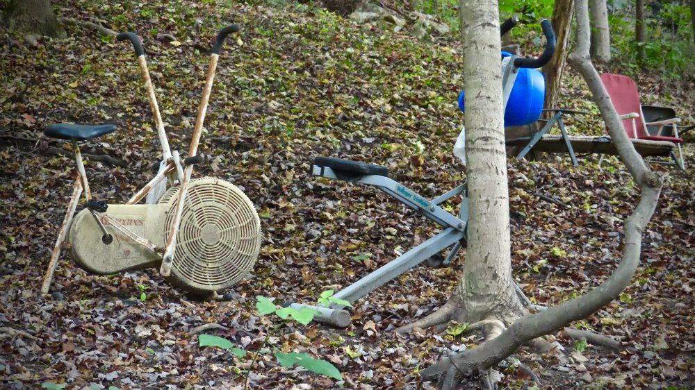 People abandon all sorts of things in their backyards