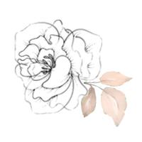 Small_Graphic.jpg